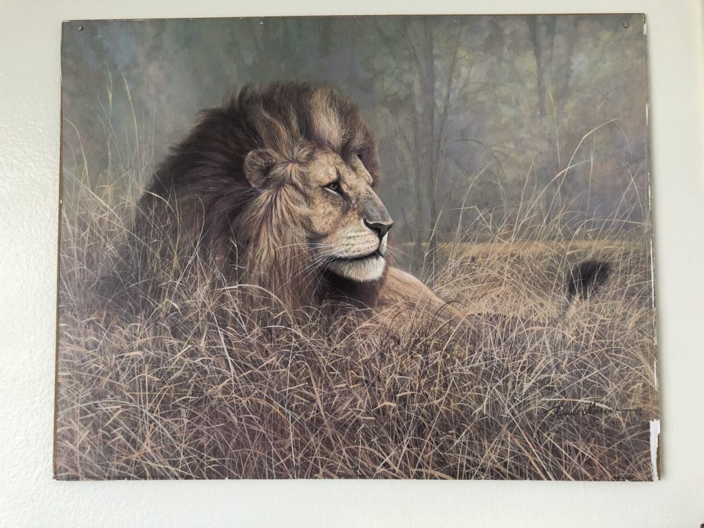 vintage thrift store lion art