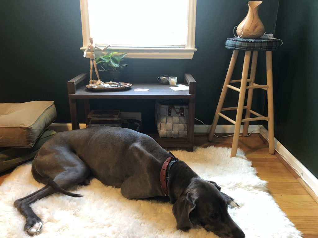great dane3 dog laying on fur rug in home meditation yoga studio